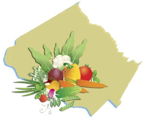 Food Council logo